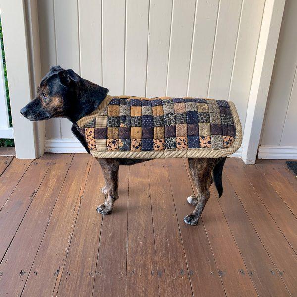 Benji Dog Coat on Marley